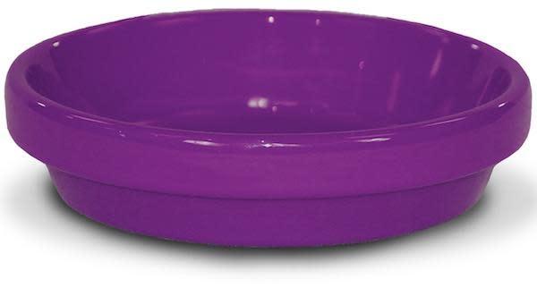 """Saucer 8"""" Glazed Violet"""