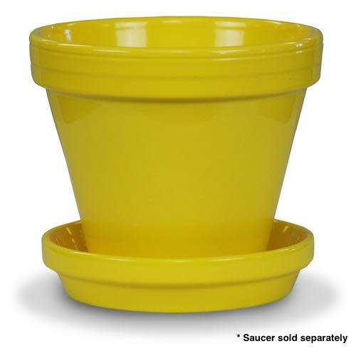 "Pot 6"" Glazed Standard Yellow"