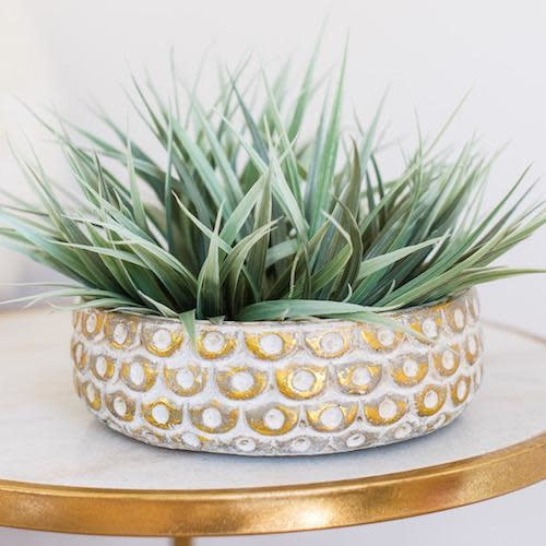 Pot/Low Bowl Sophia w/Gold Scallops Sml 8x3 Cream