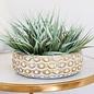Pot/Low Bowl Sophia w/Gold Scallops Lrg 13x5 Cream
