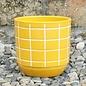 Pot Maria Squares 6x6 Yellow