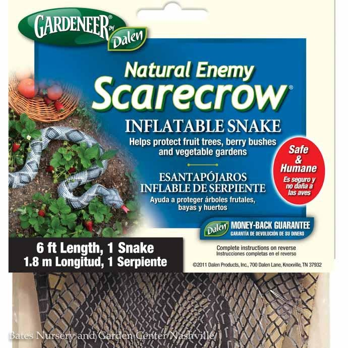 Inflatable Snake 6'-Natural Enemy Scare Dalen