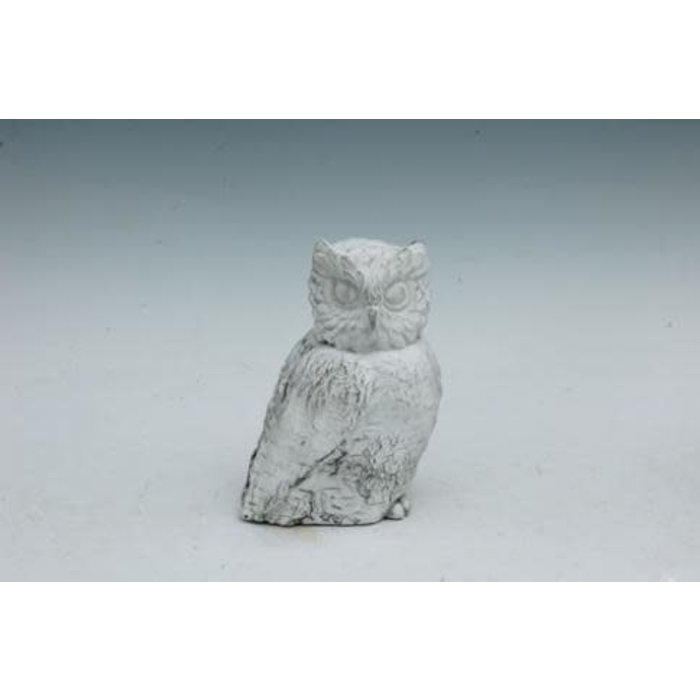 "Statuary Owl Birch-Look Sml 8""h Cement"