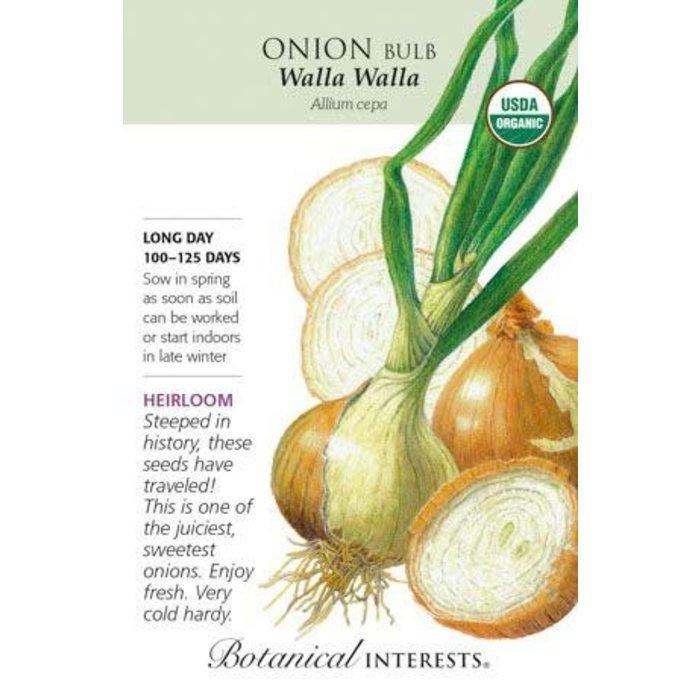 Seed Onion WallaWalla Yellow Organic Heirloom - Allium cepa