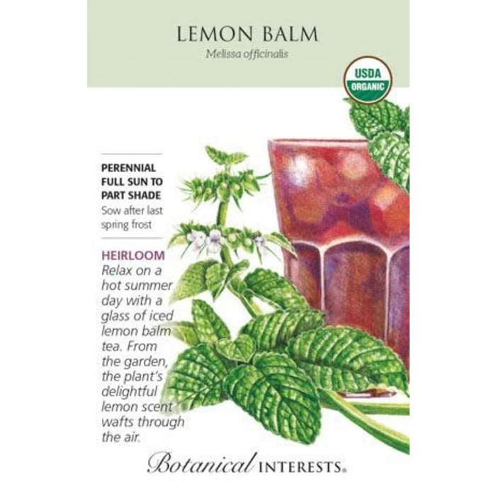 Seed Lemon Balm Organic Heirloom - Melissa officinalis