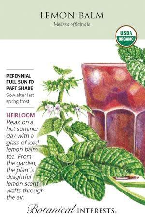 Seed Lemon Balm Organic Heirloom - Melissa officinalis