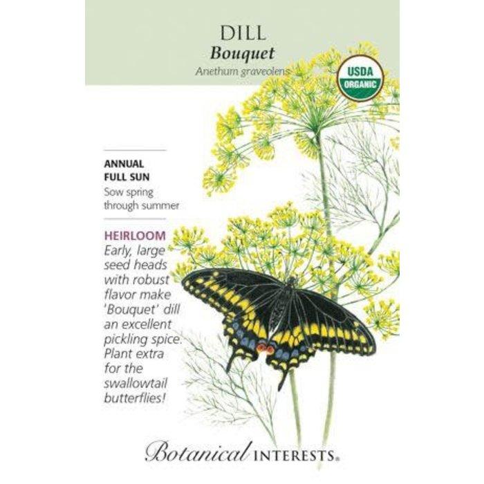 Seed Dill Bouquet Organic Heirloom - Anethum graveolens