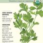 Seed Parsley Italian Dark Green Flat Leaf Organic Heirloom - Petroselinum cripsum