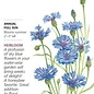 Seed Bachelor Button Blue Boy Heirloom - Centaurea cyanus