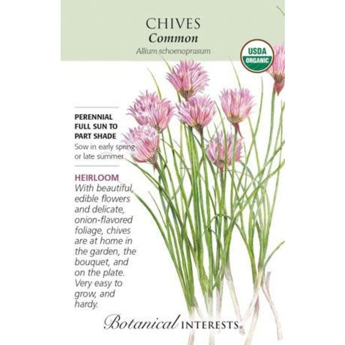 Seed Chives Common Organic Heirloom - Allium schoenoprasum