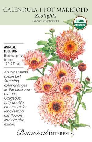 Seed Calendula Zeolights Organic - Calendula officinalis