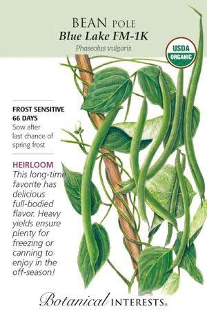 Seed Bean Pole Blue Lake FM-1K Organic Heirloom - Phaseolus vulgaris