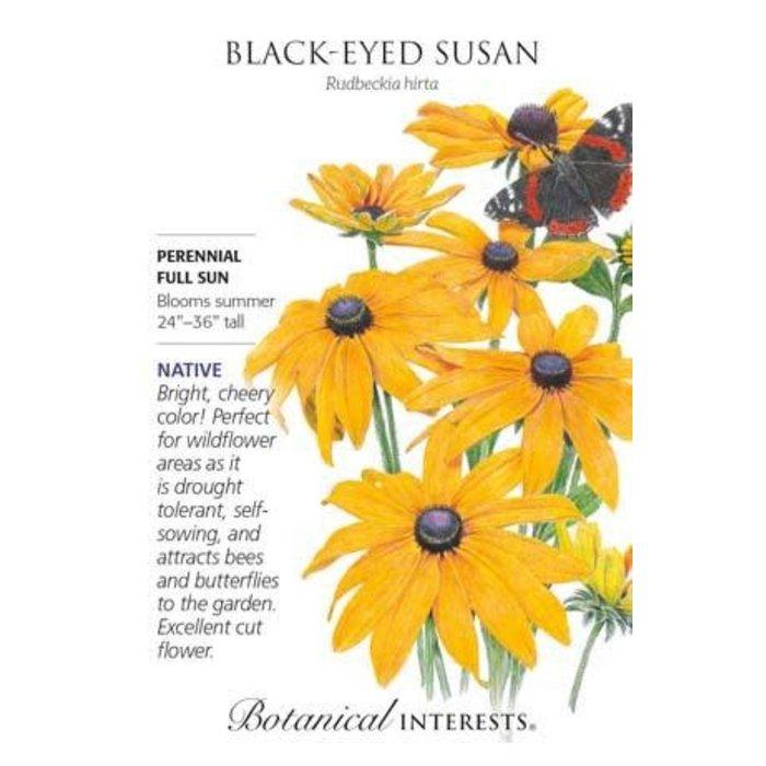 Seed Black-Eyed Susan Heirloom Native - Rudbeckia hirta