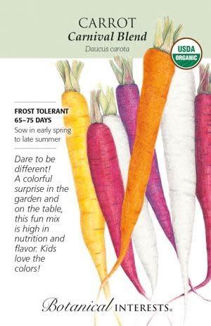 Seed Carrot Carnival Blend Organic - Daucus carota sativus