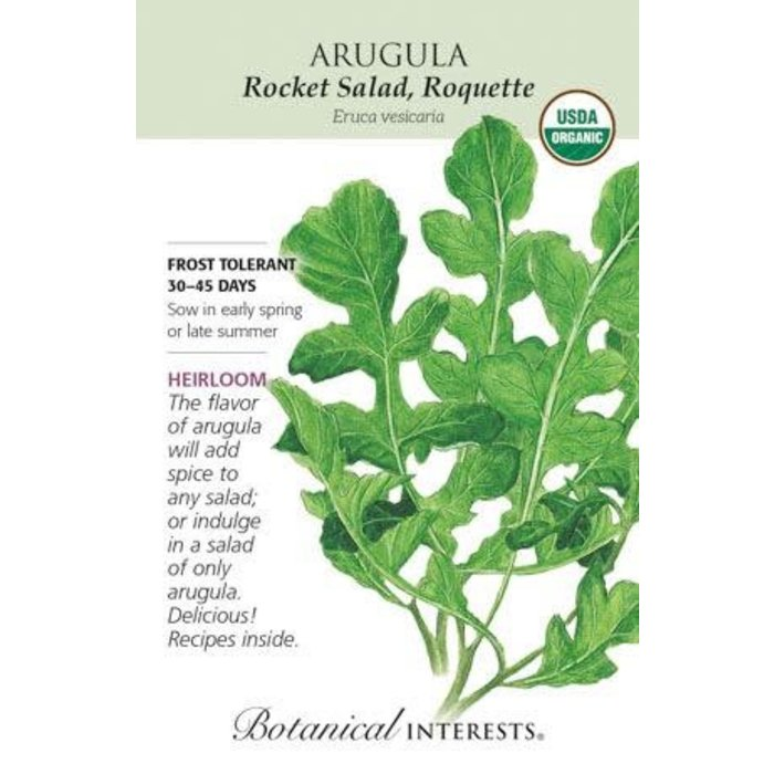 Seed Arugula Rocket Salad Organic Heirloom - Eruca sativa