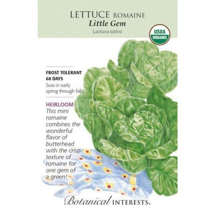 Seed Lettuce Romaine Little Gem Organic Heirloom - Lactuca sativa