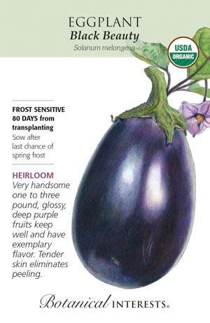 Seed Eggplant Black Beauty Organic Heirloom - Solanum melongena