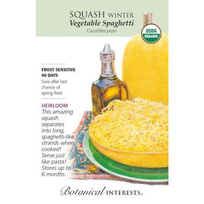 Seed Squash Winter Vegetable Spaghetti Organic Heirloom - Curcurbita pepo