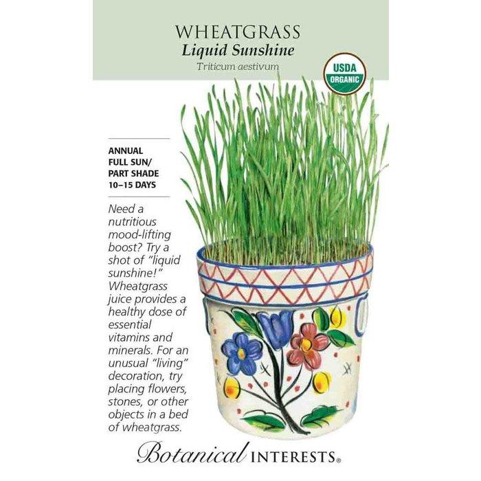 Seed Wheatgrass Liquid Sunshine Organic - Triticum aestivum
