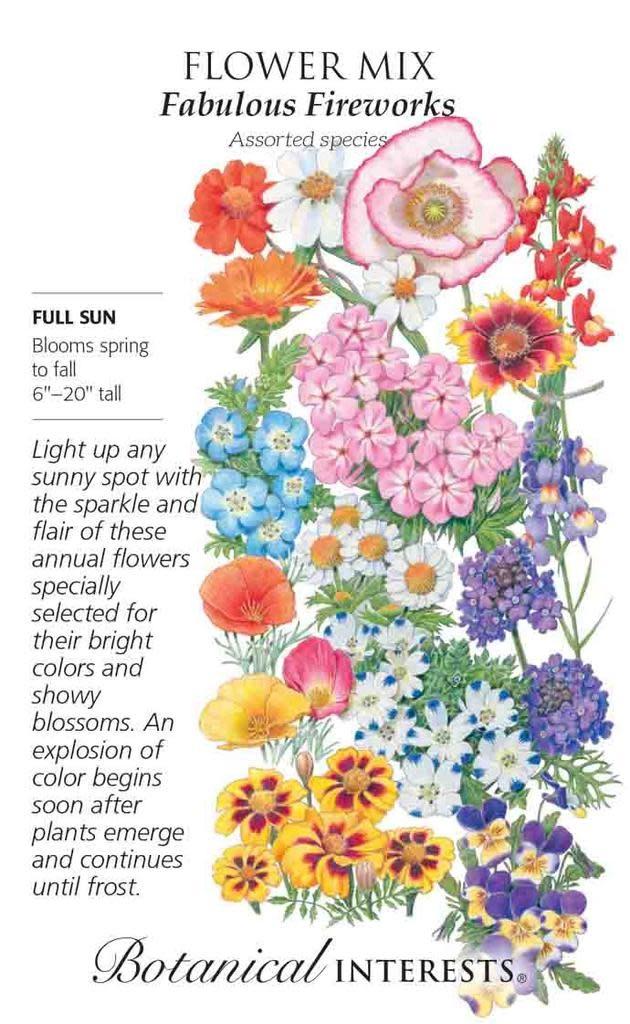 Seed Flower Mix Fabulous Fireworks - Assorted species - Lrg Pkt