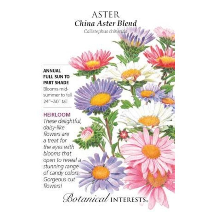 Seed Aster China Blend Heirloom - Callistephus chinensis