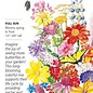 Seed Flower Mix Bring Home the Butterflies - Assorted species
