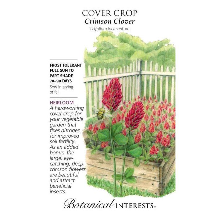 Seed Cover Crop Crimson Clover Heirloom - Trifolium incarnatum - Lrg Pkt