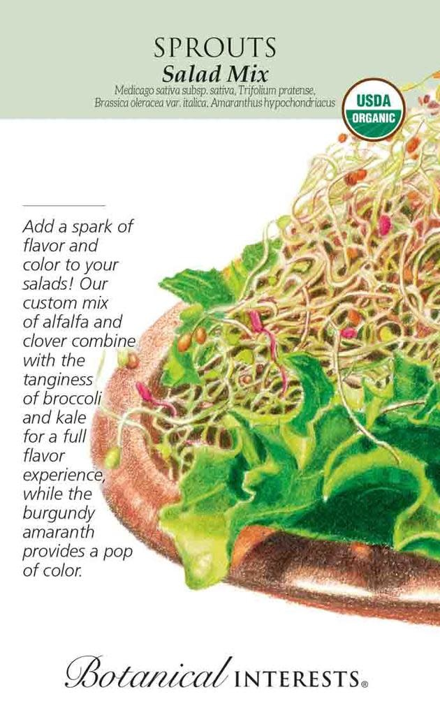Seed Sprouts Salad Mix Organic - Assorted species - Lrg Pkt