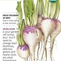 Seed Turnip Purple Top White Globe Organic Heirloom - Brassica rapa