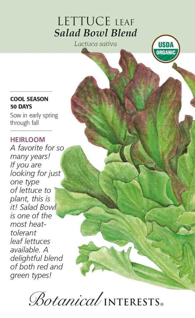 Seed Lettuce Leaf Salad Bowl Blend Organic Heirloom - Latuca sativa - Lrg Pkt