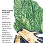 Seed Mustard Florida Broadleaf Heirloom - Brassica juncea