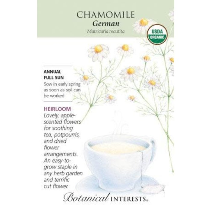 Seed Chamomile German Organic Heirloom - Anthriscus cerefolium