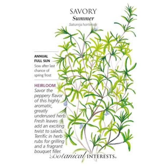 Seed Savory Summer Heirloom - Satureja hortensis