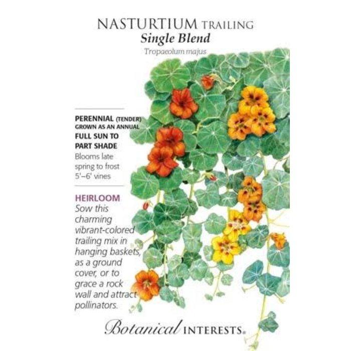 Seed Nasturtium Trailing Single Blend Heirloom - Tropaeolum majus