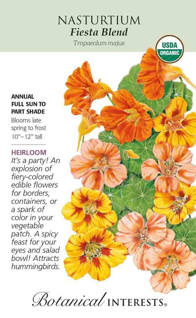 Seed Nasturtium Fiesta Blend Heirloom - Tropaeolum majus - Lrg Pkt