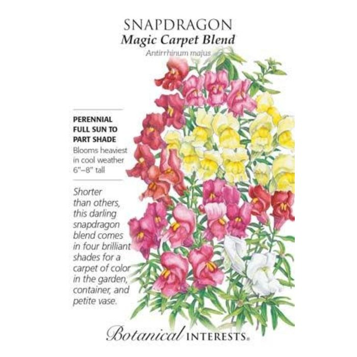 Seed Snapdragon Magic Carpet Blend - Antirrhinum majus