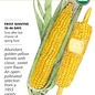 Seed Corn Sweet True Gold Organic - Zea mays