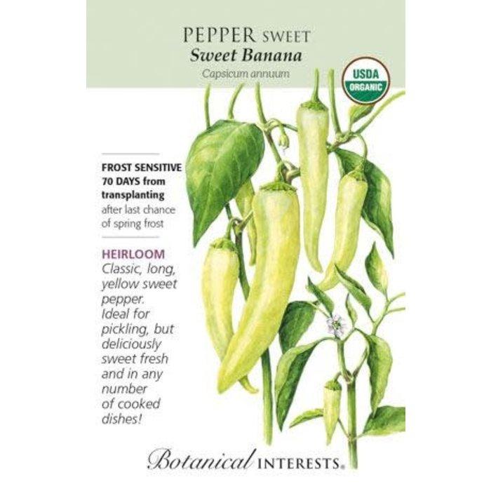 Seed Pepper Sweet Banana Organic Heirloom - Capsicum annuum