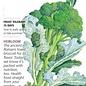 Seed Broccoli Waltham 29 Heirloom - Brassica oleracea var. italica