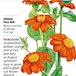 Seed Sunflower Mexican Torch Organic Heirloom - Tithonia rotundifolia