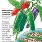 Seed Pepper Chile Jalapeno Jalafuego - Capsicum annuum (hybrid)