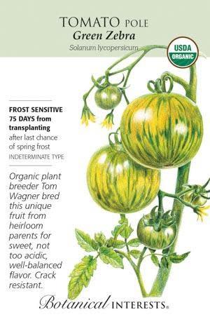 Seed Tomato Pole Green Zebra Organic - Solanum lycopersicum