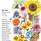 Seed Flower Mix Precious Pollinators - Assorted species