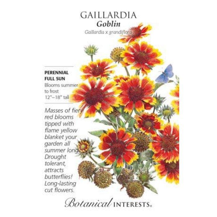 Seed Gaillardia Goblin - Gaillardia x grandiflora