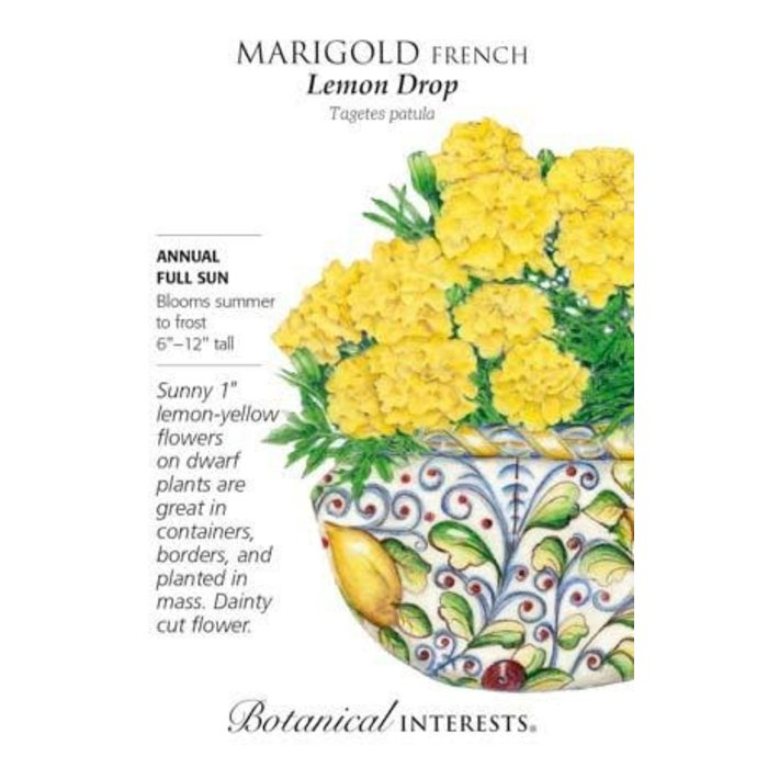 Seed Marigold French Lemon Drop - Tagetes patula