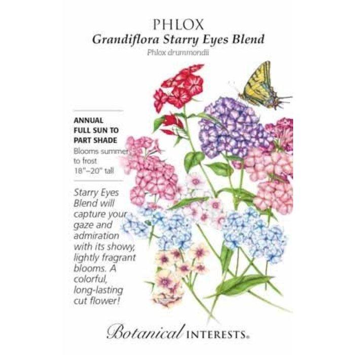 Seed Phlox Grandiflora Starry Eyes Blend - Phlox drummondii