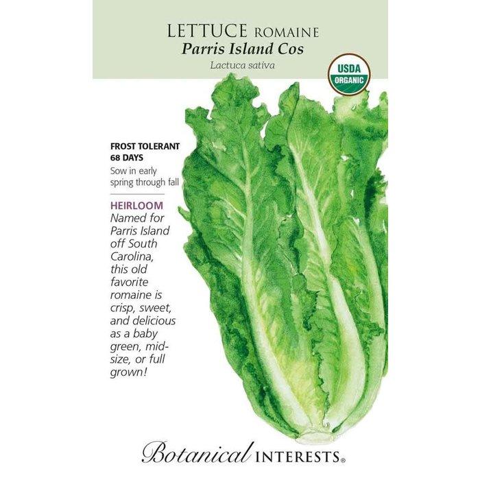 Seed Lettuce Romaine Parris Island Cos Organic Heirloom - Lactuca sativa - Lrg Pkt
