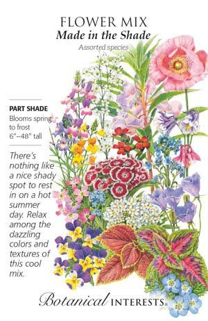 Seed Flower Mix Made in the Shade - Assorted species