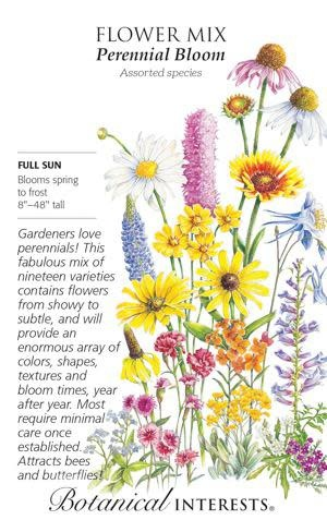 Seed Flower Mix Perennial Bloom - Assorted species - Lrg Pkt