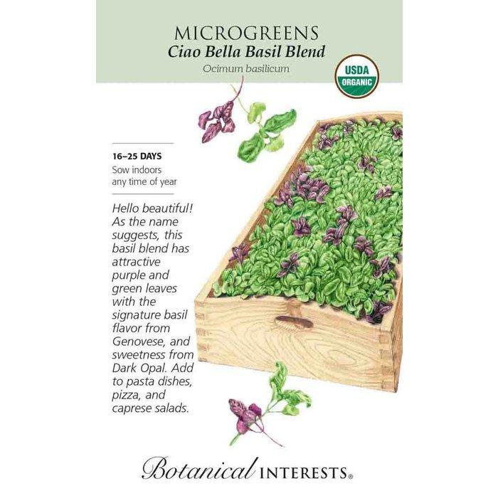 Seed Microgreens Basil Ciao Bella Blend Organic - Ocimum basilicum - Lrg Pkg